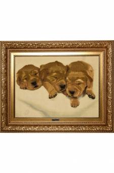 سه توله سگ