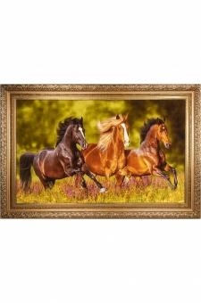 گله اسب در چمن