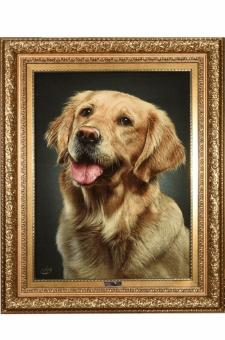 چهره سگ